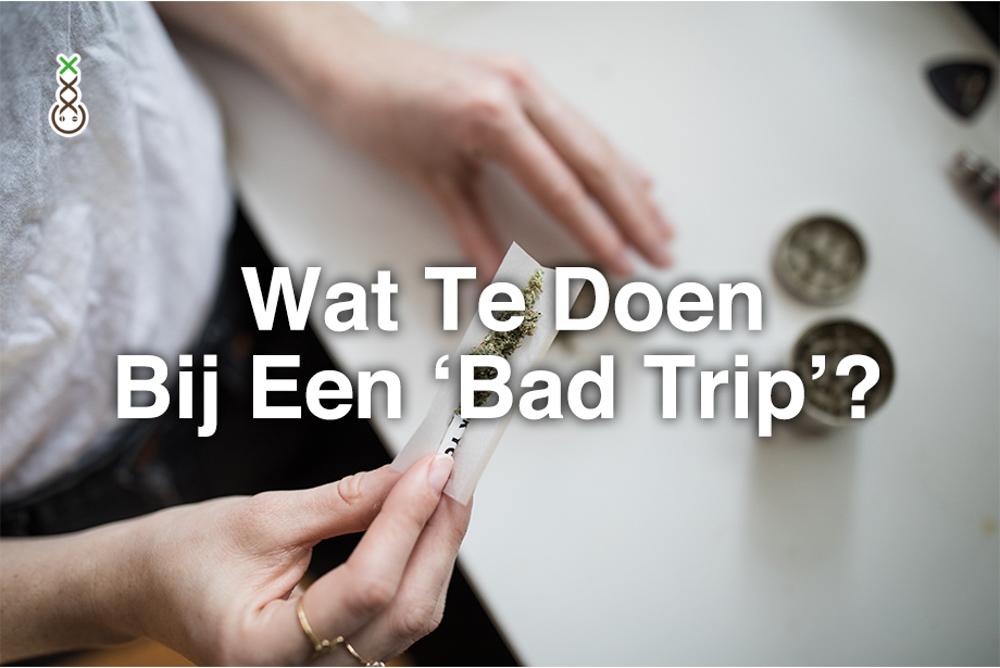 Bad trip wiet