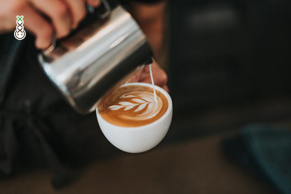 best coffeeshops amsterdam